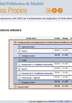 Master degree in numerical simulation in engineering for Politecnica de madrid master